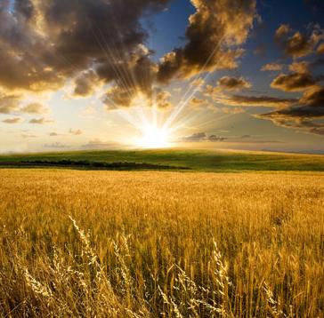نگاهى گذرا به دنیا و آخرت در آیینه آیات و روایات