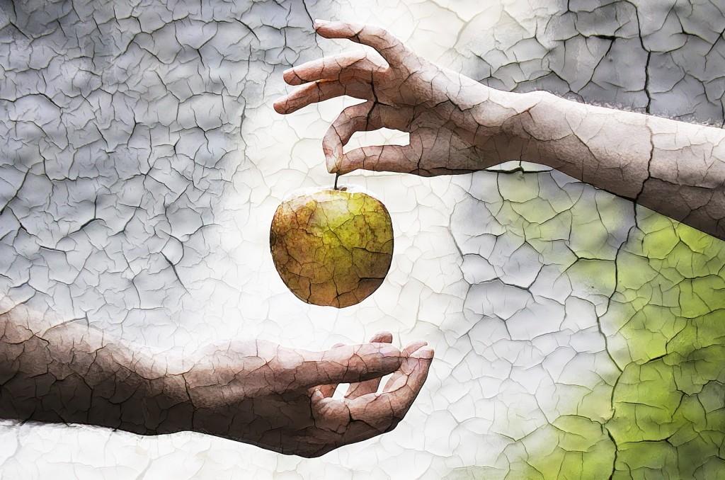در تورات حوا میوه را به آدم میدهد.